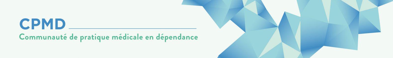 (Bannière logo de la Communauté de pratique)