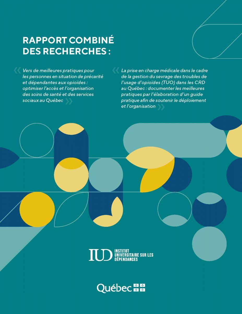 Rapport de recherches de l'IUD 2020