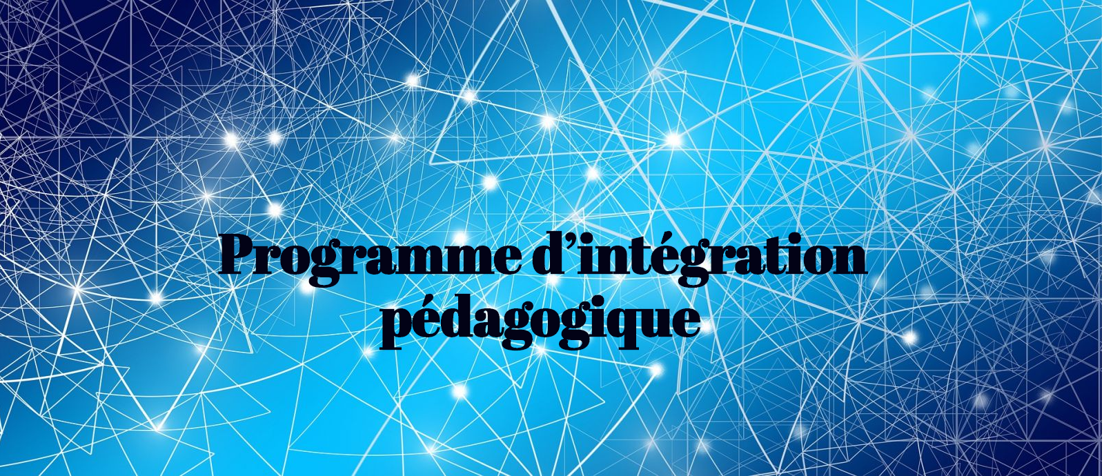 programme d'intégration pédagogique