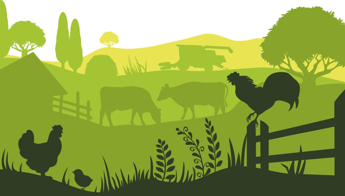 Illustration d'un paysage agricole