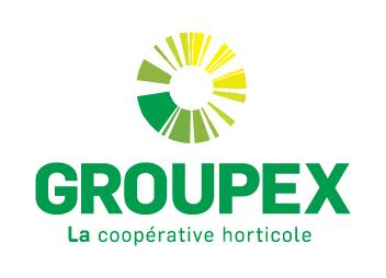 Groupex