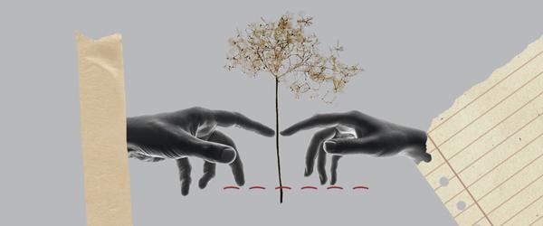 Novembre 2020 – Je consens, tu consens..: conjuguer sans fautes