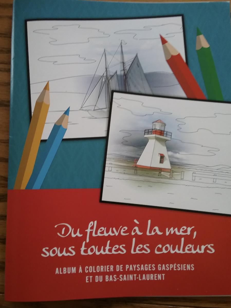 Promoteur : Association des services de loisir en institution du Québec - Région Bas-Saint-Laurent/Gaspésie/Iles de la Madeleine