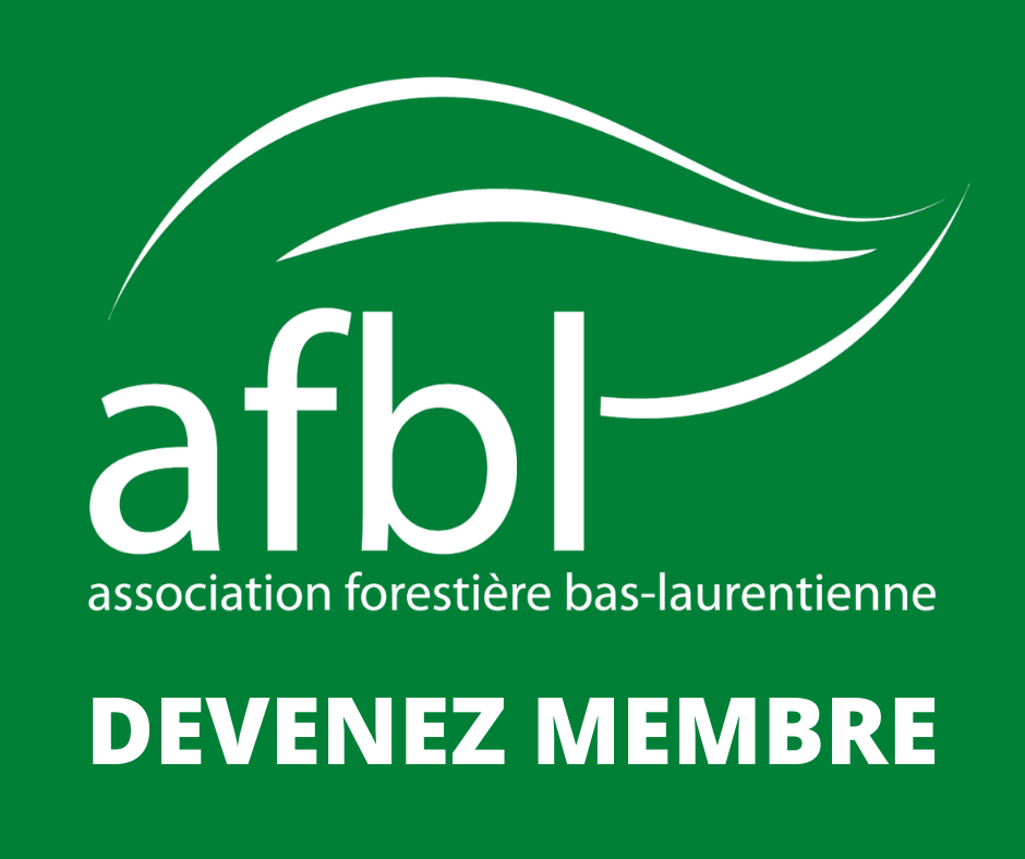 logo AFBL