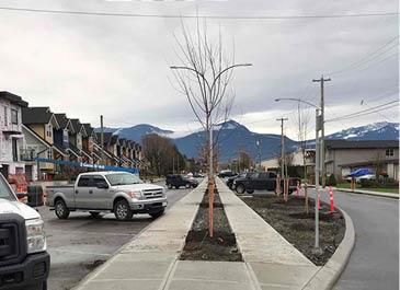 Image of newly installed sidewalks