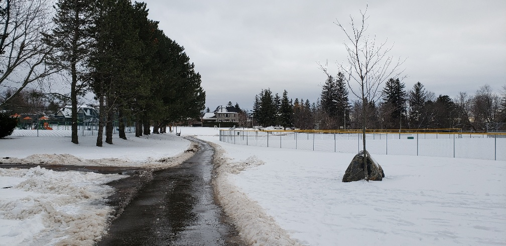 Image of plowed trail