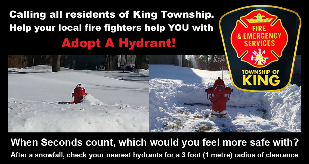 Image of King Fire request to adopt a fire hydrant