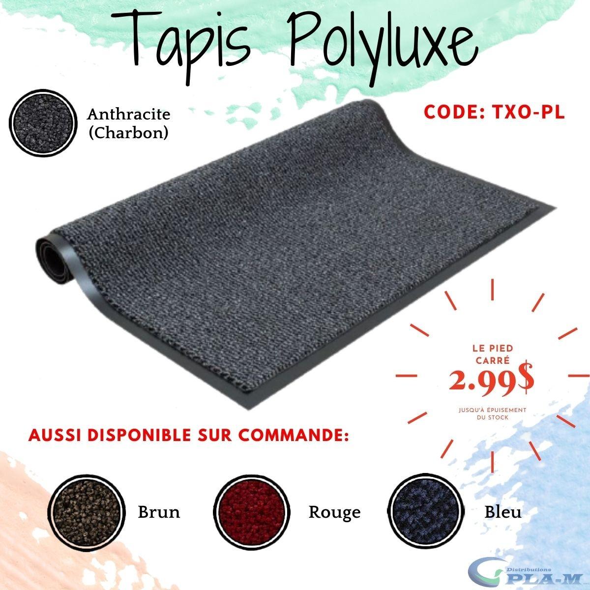 Promotions de tapis de fibres polypropylène avec endos de vinyle Polyluxe Distributions PlaM