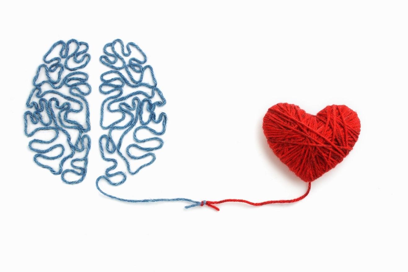 Formation Intelligence émotionnelle les 26 et 27 novembre 2020