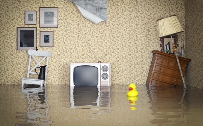 AEC Assurance de dommages et communication en anglais